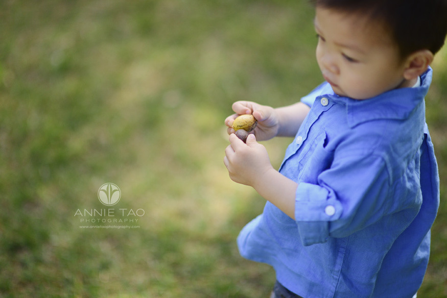South-Bay-lifestyle-children-photography-toddler-holding-fruit-from-trees