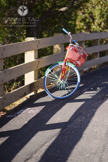bay-area-lifestyle-photography-a-parked-google-bikes