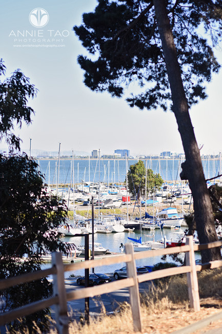 San-Francisco-Bay-Area-lifestyle-photography-marina-view-from-woods