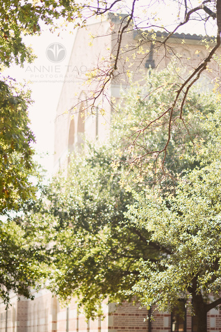Houston-commercial-photography-rice-business-school-back-view-through-trees