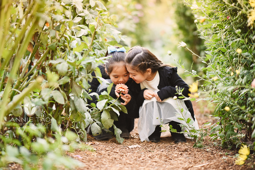 San-Francisco-lifestyle-children-photography-two-young-girls-smelling-a-flower-in-tall-garden