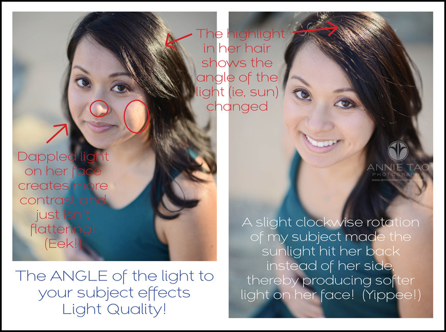 Annie-Tao-Photography-Tip-The-Angle-Of-Light-Effects-Quality-Of-Light-bg