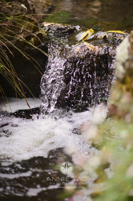 East-Bay-lifestyle-photography-waterfall-closeup