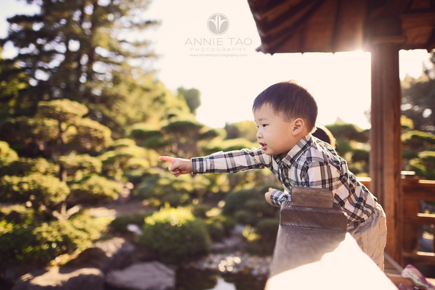 east-bay-lifestyle-children-photography-toddler-boy-pointing-at-fish-in-pond
