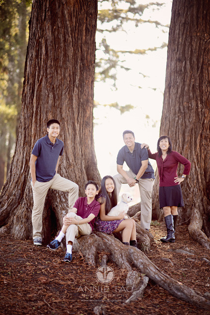 South-Bay-lifestyle-family-photography-family-of-five-posed-by-tree