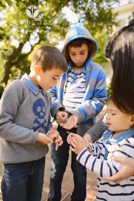 San-Francisco-Bay-Area-lifestyle-children-photography-three-boys-holding-caterpillars