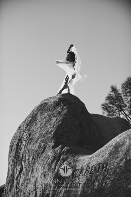 East-Bay-dance-photography-dancer-with-sheer-fabric-on-giant-rock-BxW