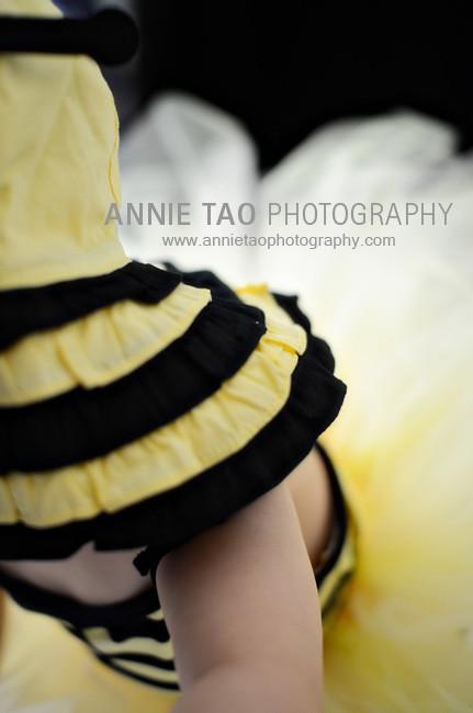 AnnieTaoPhotographyBB-5bg