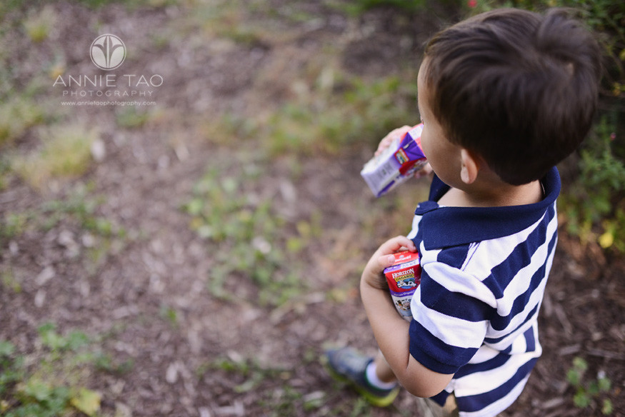 East-Bay-lifestyle-children-photography-young-boy-in-stripes-hoarding-the-milk-boxes