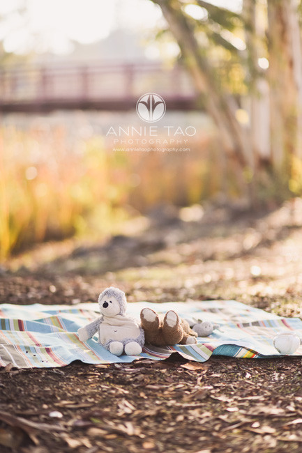 South-Bay-lifestyle-children-photography-stuffed-animals-on-picnic-blanket