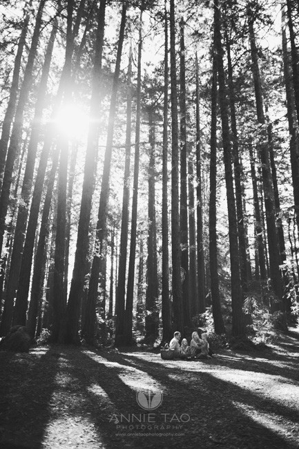 east-bay-lifestyle-family-photography-family-picnicking-in-redwood-forest-bxw