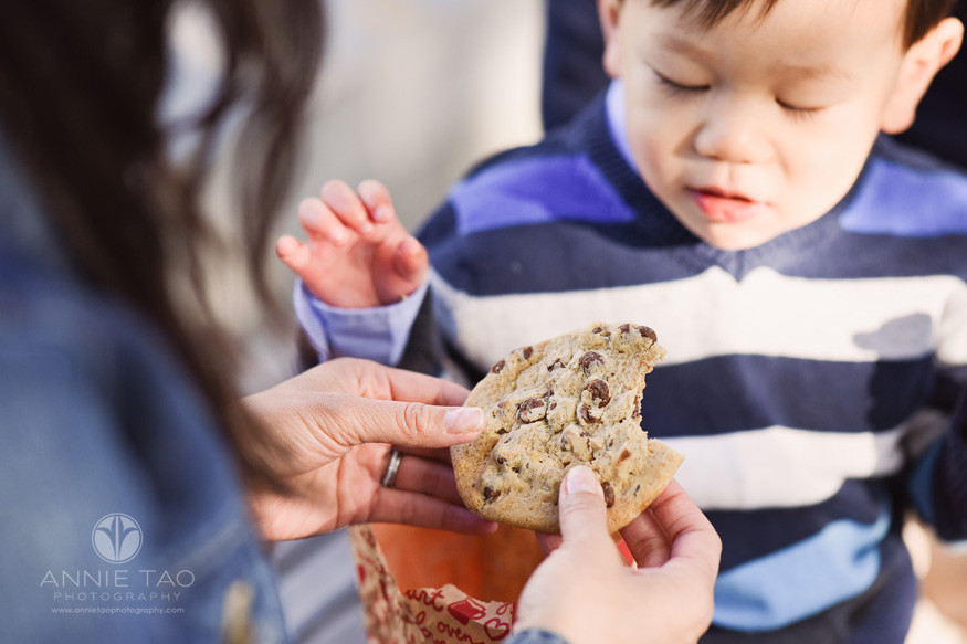 san-francisco-lifestyle-children-photography-toddler-looking-at-chocolate-chip-cookie