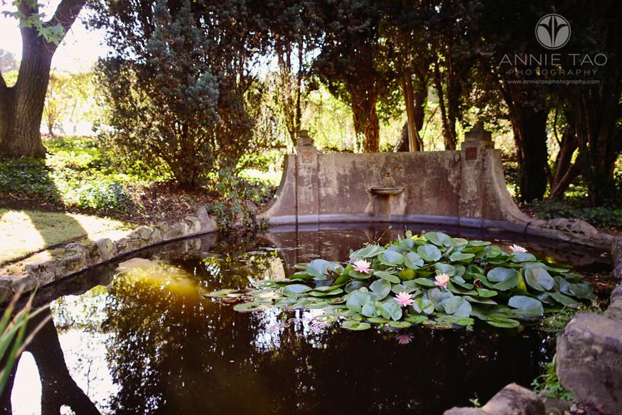 San-Francisco-Bay-Area-Peninsula-lifestyle-photography-pond-with-lilipads