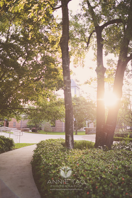 Commercial-education-photography-sunrise-over-school