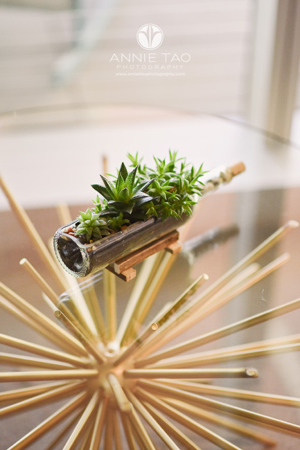 San-Francisco-Bay-Area-lifestyle-photography-succulents-on-glass-table