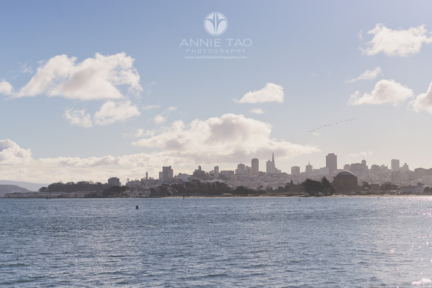 San-Francisco-lifestyle-photography-downtown-view