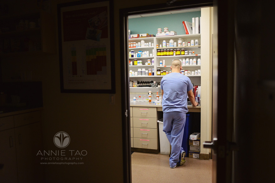 East-Bay-Commercial-Photography-San-Ramon-Bishop-Ranch-Veterinary-technician-in-the-pharmacy