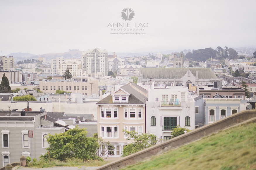 San-Francisco-lifestyle-photography-cityscape-from-a-park