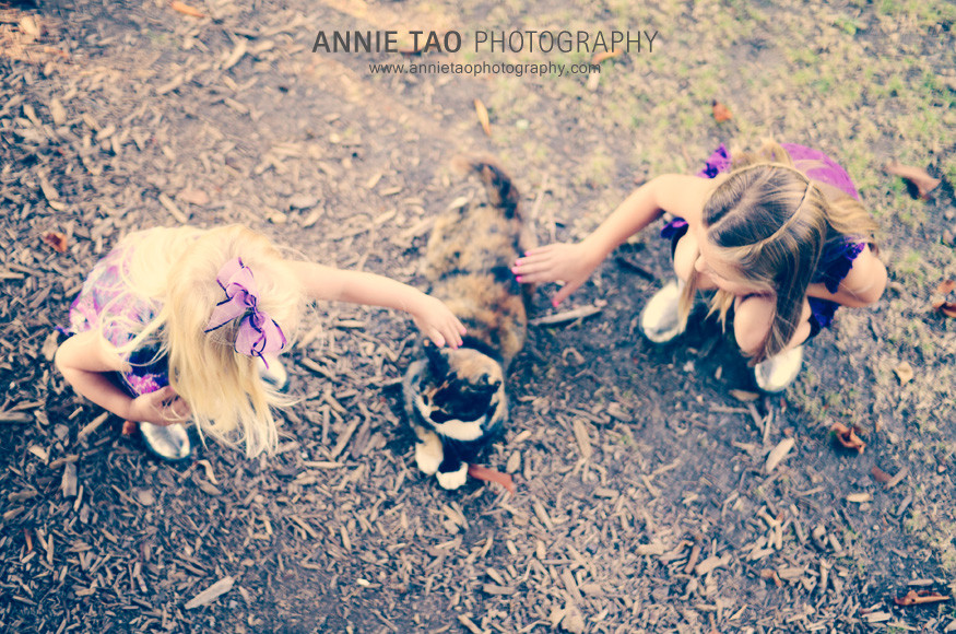 South-Bay-lifestyle-family-photography-girls-petting-stray-cat