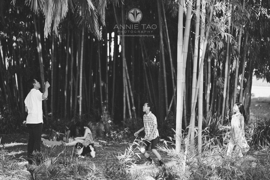 Bay-Area-lifestyle-family-photography-family-playing-by-bamboo-forest