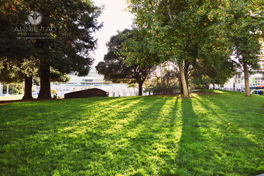 San-Francisco-lifestyle-photography-downtown-garden-with-sun-rays-shining-through-the-trees