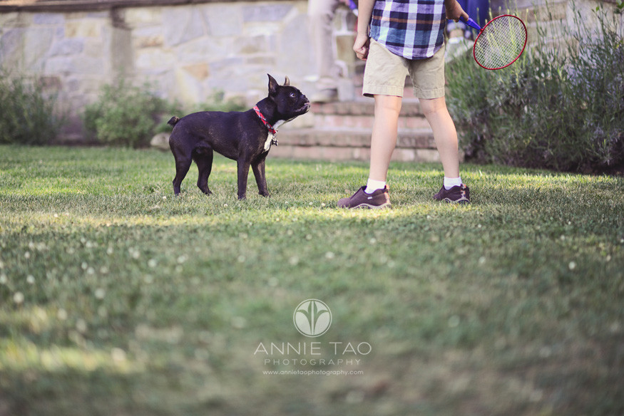 South-Bay-lifestyle-family-photography-little-black-dog-waiting-to-play