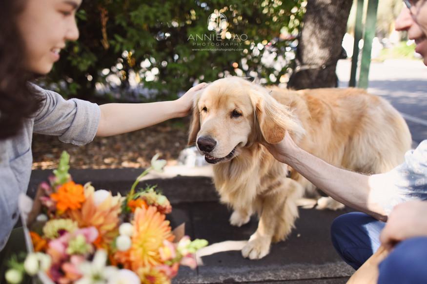San-Francisco-Bay-Area-lifestyle-family-photography-petting-golden-retriever-dog-at-farmers-market