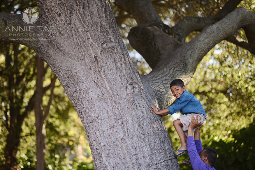 East-Bay-lifestyle-family-photography-father-pushing-young-son-up-onto-a-massive-tree