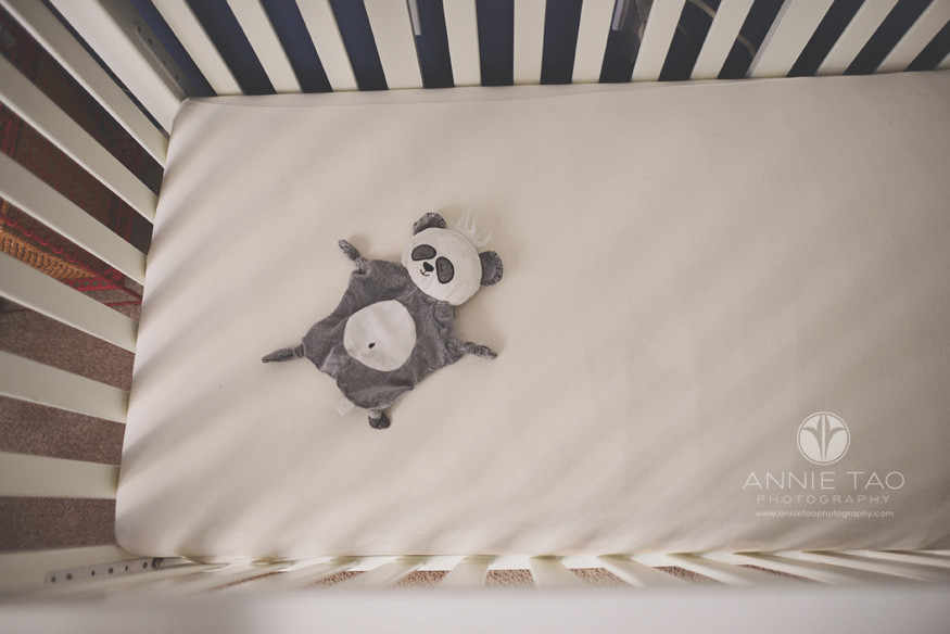 South-Bay-lifestyle-baby-photography-panda-lovey-in-crib