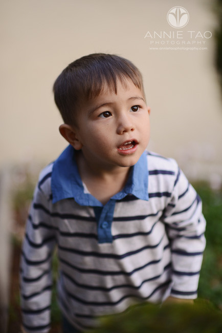 San-Francisco-Bay-Area-lifestyle-children-photography-toddler-boy-looking-upward