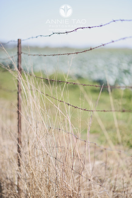 Bay-Area-lifestyle-photography-fence-by-beach