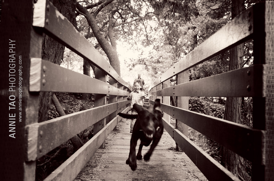 Berkeley-lifestyle-family-photography-dog-racing-past-boy-on-bridge