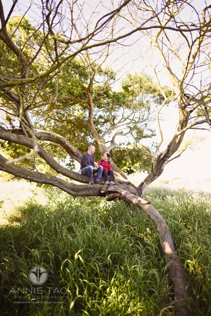 East-Bay-lifestyle-family-photography-proud-father-sitting-with-son-in-a-tree