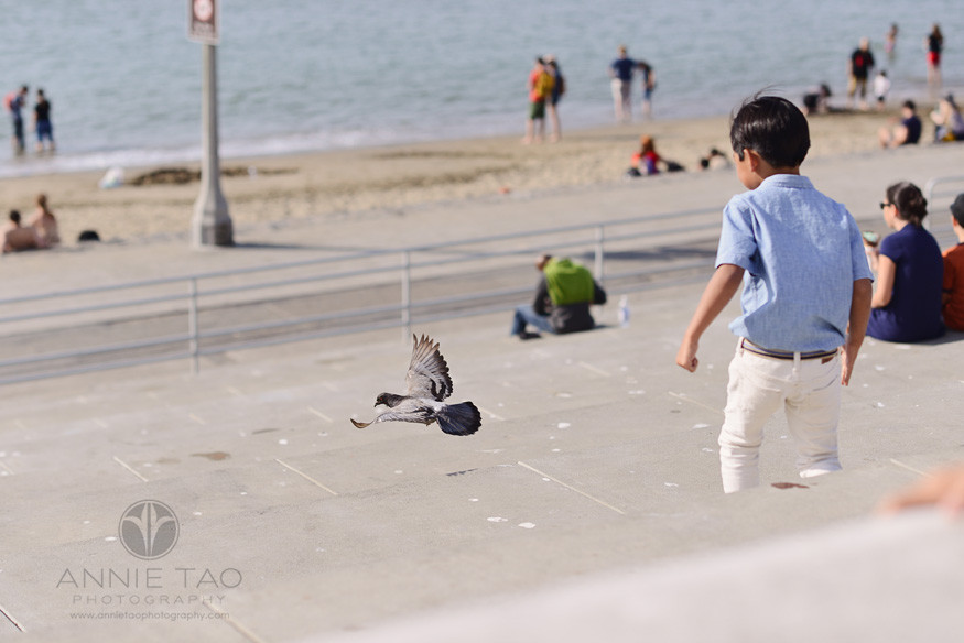 San-Francisco-lifestyle-children-photography-young-boy-watching-bird-in-flight