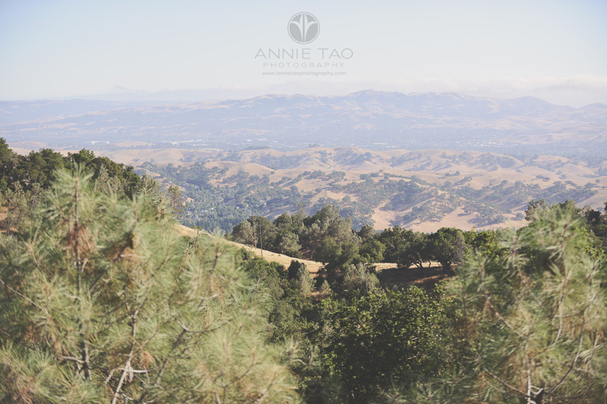 East-Bay-lifestyle-photography-view-from-top-of-mountain