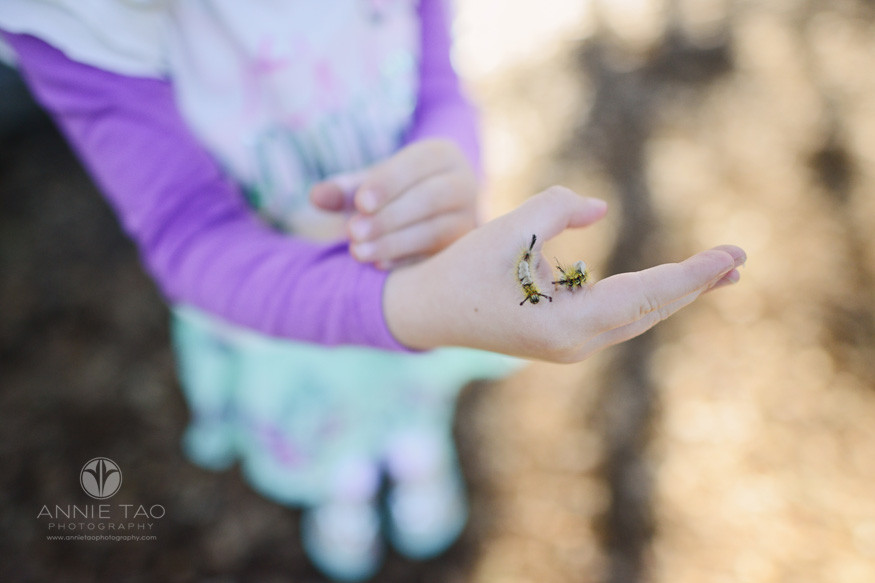 Bay-Area-lifestyle-children-photography-preschooler-holding-caterpillars-on-hand