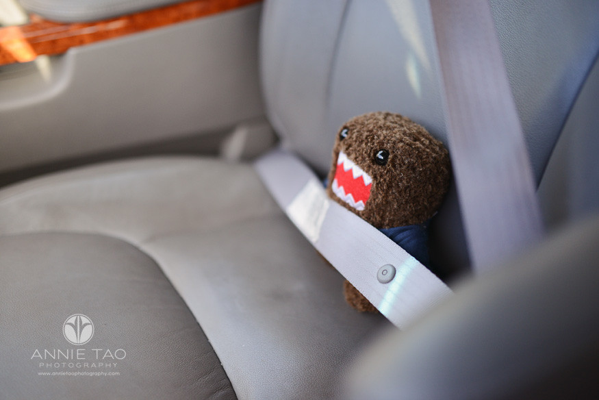 San-Francisco-Bay-Area-children-photography-domo-buckled-in-a-car
