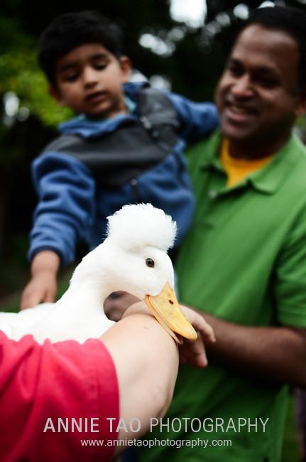 Chew-Einstein-The-Duck
