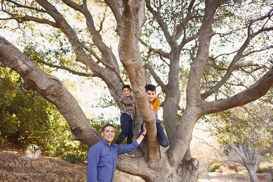 East-Bay-lifestyle-family-children-photography-father-watching-over-sons-climb-large-tree