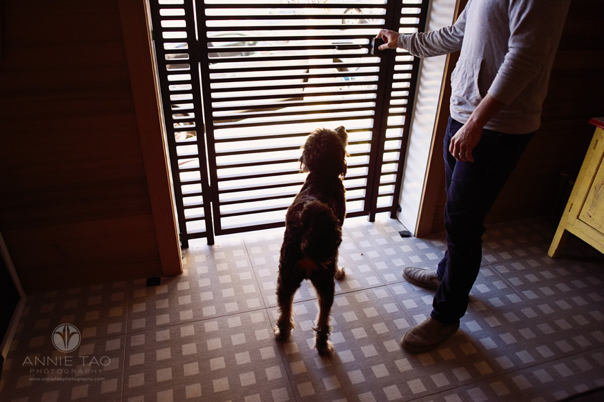 San-Francisco-lifestyle-pet-photography-puppy-waiting-for-human-dad-to-open-door