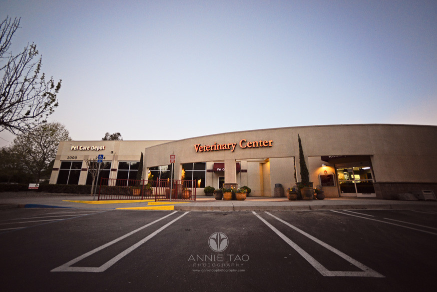 East-Bay-Commercial-Photography-Bishop-Ranch-Veterinary-front-of-building-just-before-sunrise