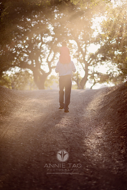 San-Francisco-Bay-Area-Peninsula-lifestyle-family-photography-dad-walking-with-daughter-on-shoulders-in-haze