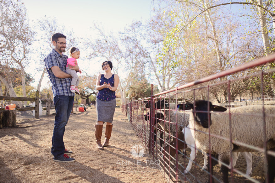 East-Bay-lifestyle-family-photography-family-looking-at-sheep-and-goats