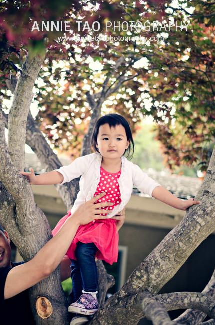 Chew-Danica-In-Tree