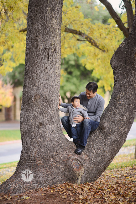 Bay-Area-Palo-Alto-lifestyle-family-photography-father-sitting-in-tree-with-son