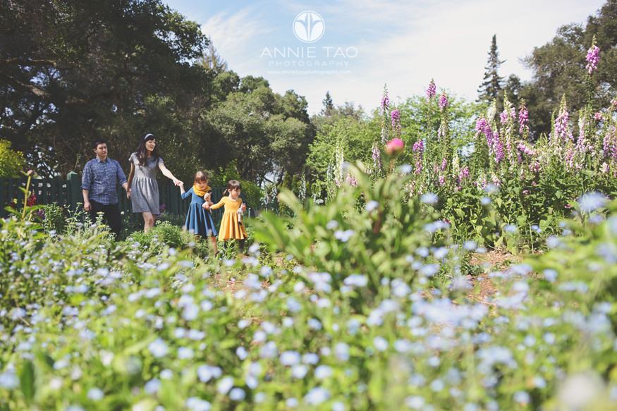 Bay-Area-lifestyle-family-photography-family-holding-hands-through-garden