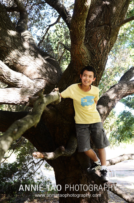 Palo-Alto-lifestyle-family-photography-boy-standing-in-large-tree