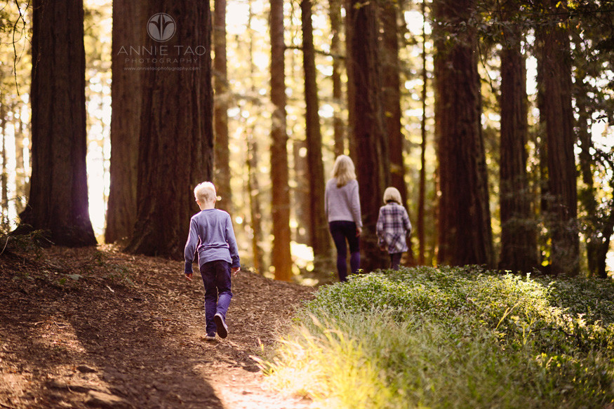 east-bay-lifestyle-family-photography-mom-and-children-walking-in-forest-with-golden-light