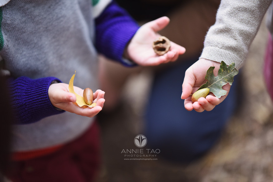 San-Francisco-Bay-Area-lifestyle-children-photography-young-hands-holding-acorns-and-leaves