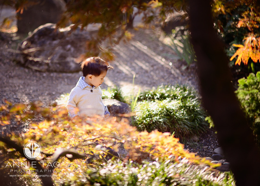 Annie-Tao-Photography-lifestyle-family-photography-toddler-boy-with-great-hair-behind-glowing-orange-trees